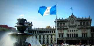 Goats - Plaza Mayor - Guatemala