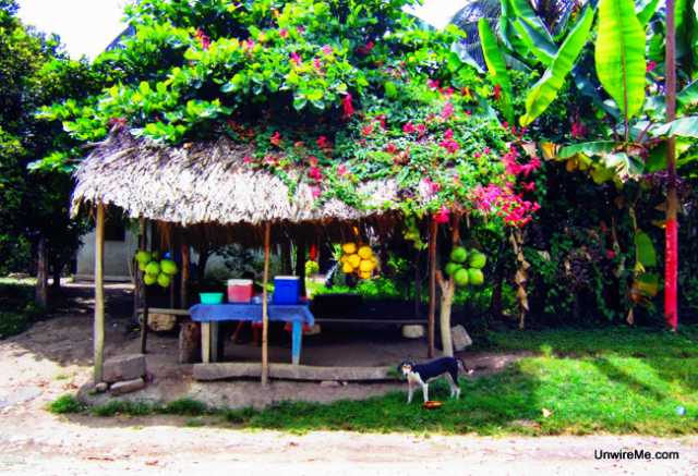 Roadside stand in Peten