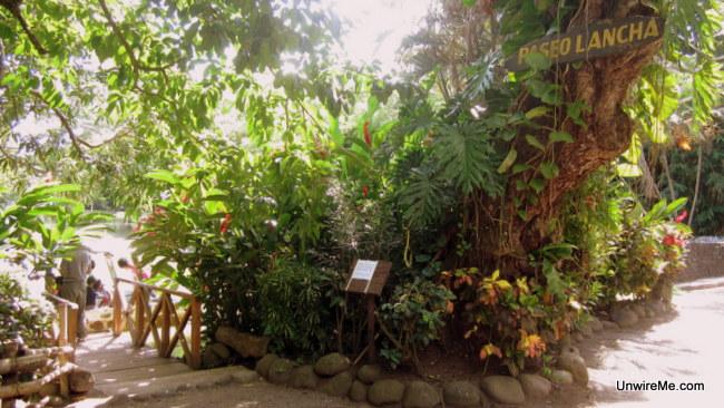 Monkey island at AutoSafari Chapin Guatemala