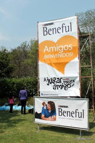 Dian Beneful Guatemala sign
