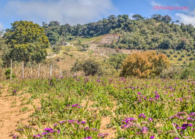 Hobbitenango Antigua Guatemala