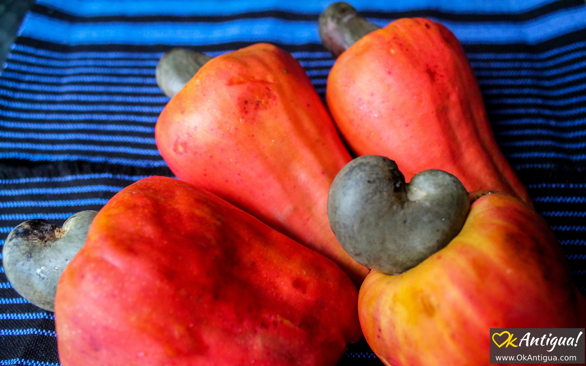 Marañon Jocote (Cashew Apple): Guatemalan Fruits ...